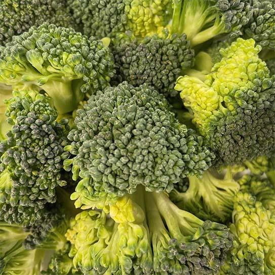 Gesneden AGF - Broccolli Roosjes - Boekel AGF Horecagroothandel