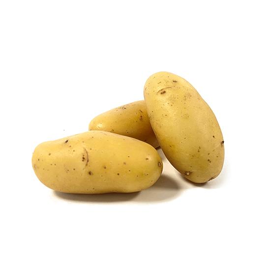 Aardappelen groothandel - Charlotte - Boekel AGF