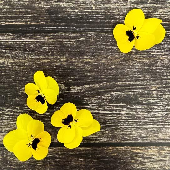 Eetbare Bloemen - Boekel AGF Horecagroothandel
