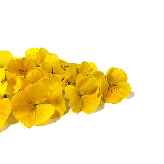 Eetbare Bloemen - Gele Viool - Boekel AGF Horecagroothandel