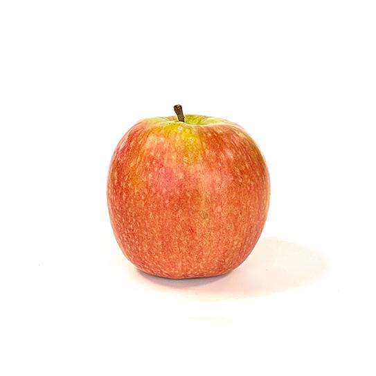 Fruit groothandel - Pink Lady - Boekel AGF