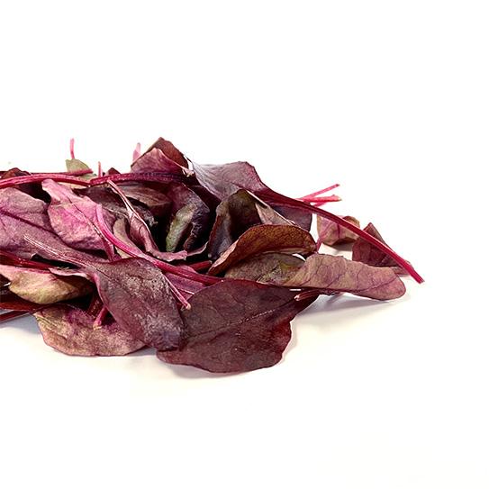 Red Chard - Boekel AGF Horecagroothandel