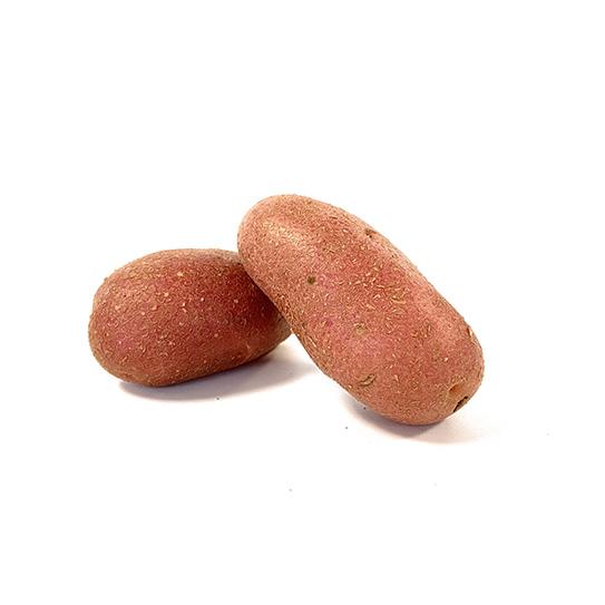Aardappelen groothandel - Rosaval - Boekel AGF