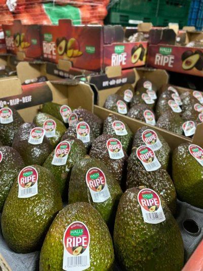 Boekel AGF Halls Avocado